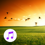 Nature Sounds Relax Sleep Pro 5.0.1-40055