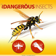 Dangerous insects 1.2