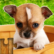 Dogs Jigsaw Puzzles Game – For Kids & Adults ???? 24.0