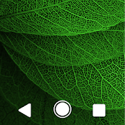 Leaves Green Theme For XZ 1.0.1