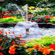Flowers Park Live Wallpaper 3
