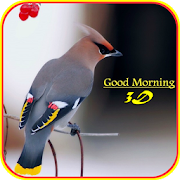 Good Morning 3D Images 11.0